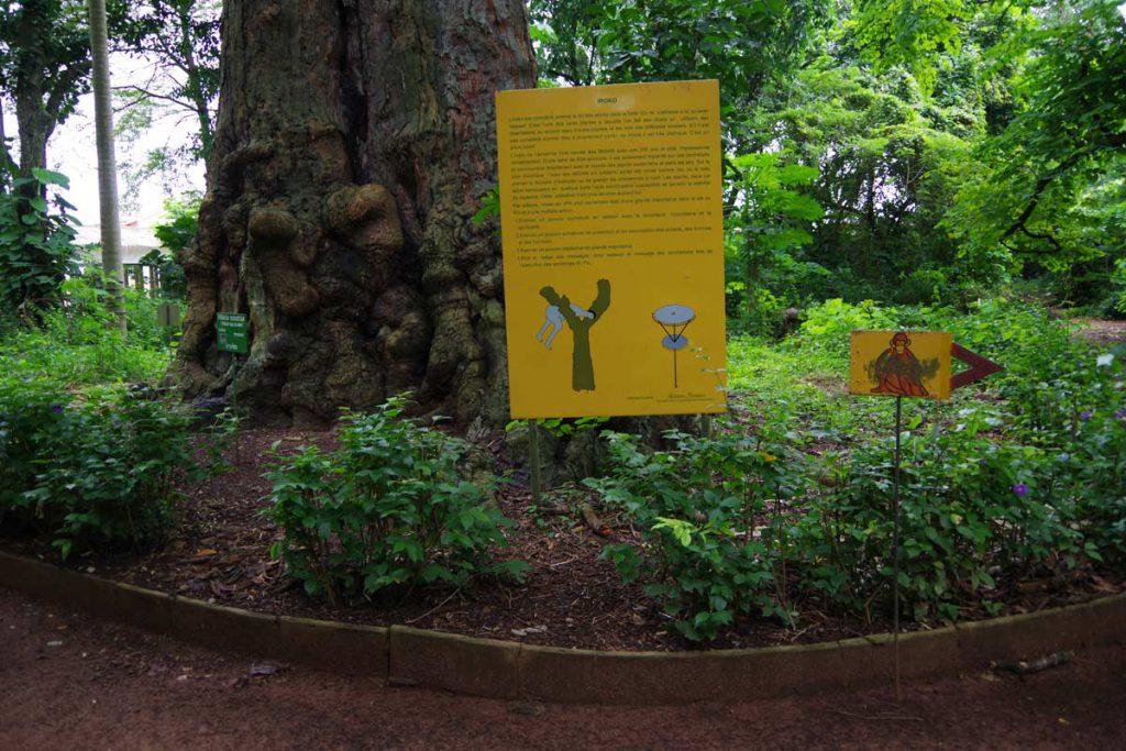 Le jardin des plantes et de la nature